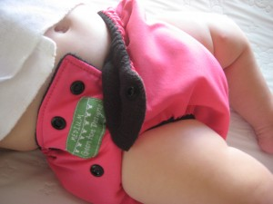 Magenta and Black GADBaby Diaper in Medium