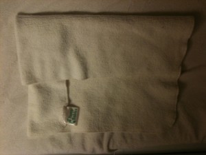 Hemp Babies Pad Fold
