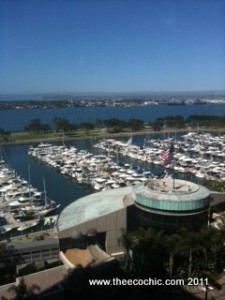 A Day in Pictures – BlogHer '11
