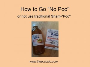 "How to Go ""No Poo"" – You Tell Me Because I'm Clueless!"
