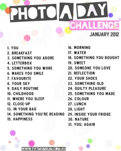 Instagram #JANPhotoaday Challenge