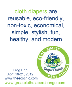 10 Ways You Can Become a Cloth Diaper Advocate