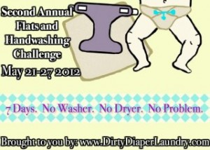 2nd Annual Flats & Handwashing Challenge with Dirty Diaper Laundry