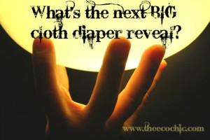 What's the next BIG cloth diaper reveal?