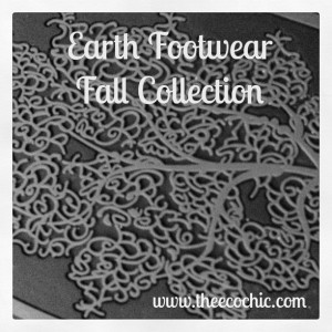Fall in Love with the Fall/Winter Earth Collection