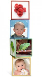 Sponsor Feature: YoBlocks – Eco-Friendly Photo Blocks