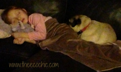 Sofa Sleepers