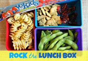 Rock the Lunch Box @TheEcoChic 3