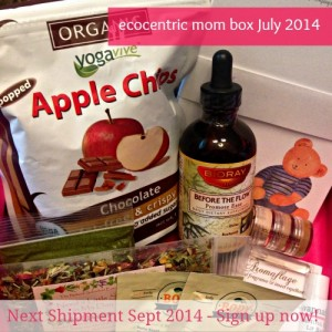 EcoCentric Mom Box July/August Review