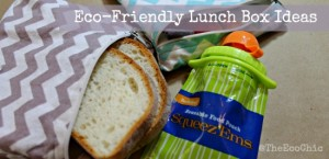 Waste-Free Lunch Containers – Fun With Lunch Series