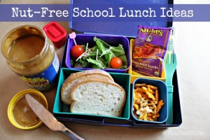 Nut-Free School Lunch Ideas – Fun With Lunch Series