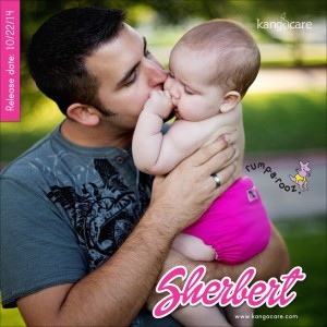 New from Rumparooz Cloth Diapers – Sherbert!