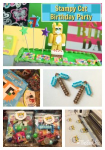 Stampy Cat Birthday Party Ideas