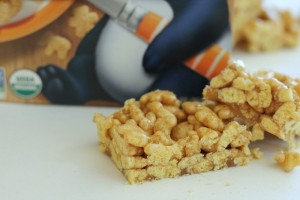 Fun with Snackimals – Cinnamon Crunch Snackimals Snack Bars Recipe