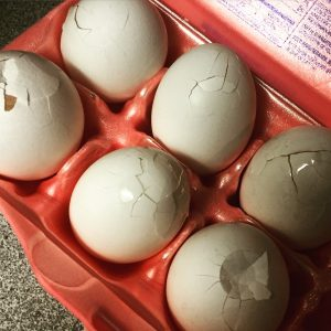 What to do with a dozen cracked eggs