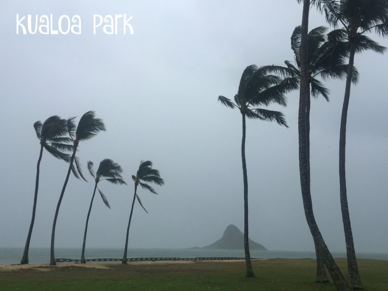kualoa park oahu hawaii north shore