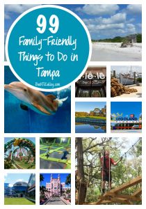 99 Family-Friendly Things to do in Tampa This Summer