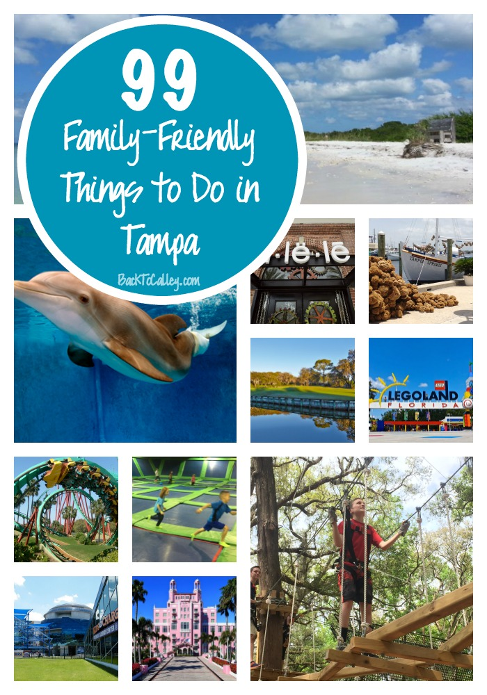 99 Family Friendly Things to Do in Tampa