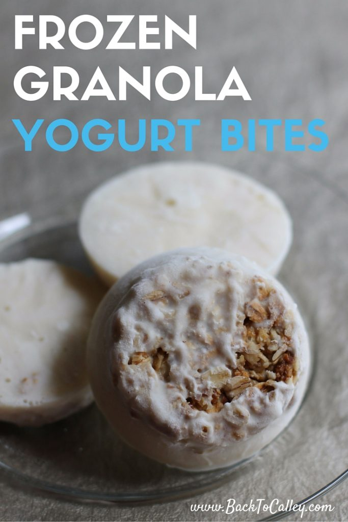Frozen Granola and Yogurt Bites