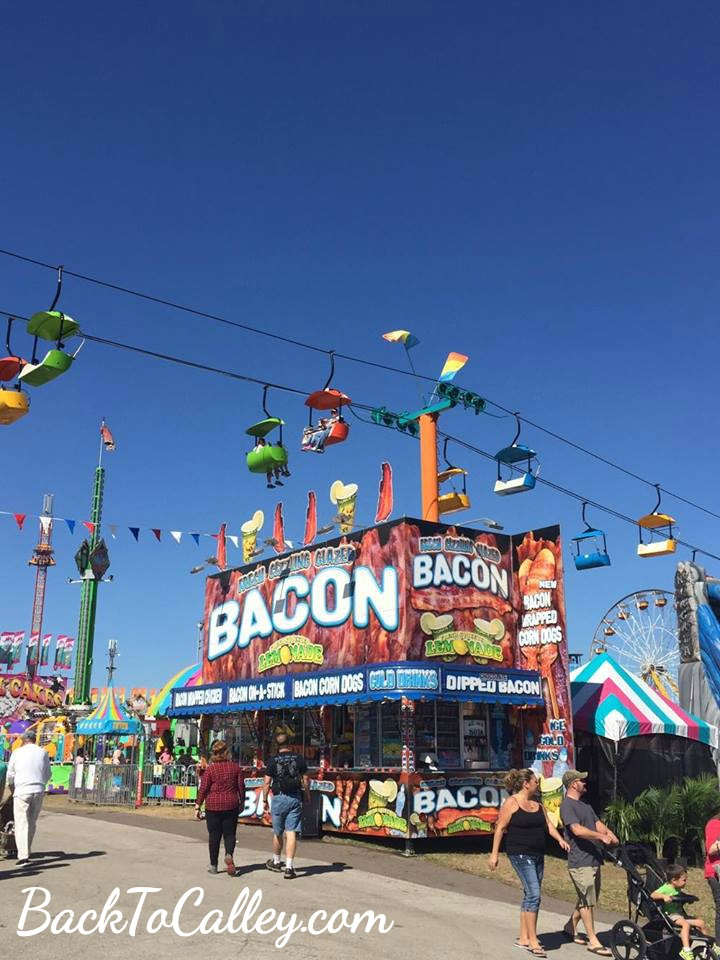 Bacon at the Florida State Fair