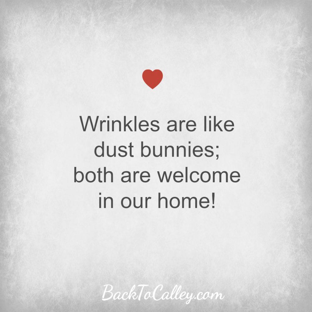 Wrinkles are link dust bunnies