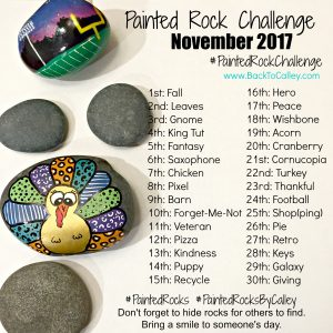 November Painted Rock Challenge