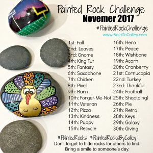 Painted Rock Challenge – November 2017