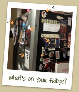 What's on Your Fridge?